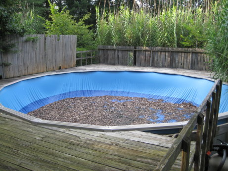 Above Ground Pool in Back Yard